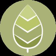 Organizational change management icon - leaf