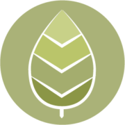 Organizational change management icon - leaf